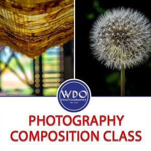 Photography Composition Class