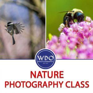 Nature Photography Class